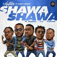 DJ Neptune - Shawa Shawa feat. Olamide, CDQ, Slimcase, Larry Gaaga