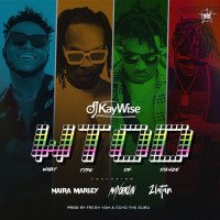 Dj Kaywise - What Type Of Dance (feat. Mayorkun, Zlatan, Naira Marley)