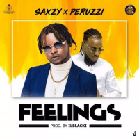 Saxzy - Feelings (feat. Peruzzi)