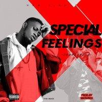 JhamZUdeen - Special Feelings