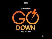 Dammy Krane x DJ Dotwine - Go Down