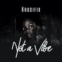 krucifix. - Not A Vibe
