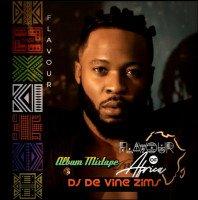 FLAVOUR N'ABALIA - DJ DE VINE ZIMS In FLAVOUR OF AFRICA ALBUM MASHUP MIX
