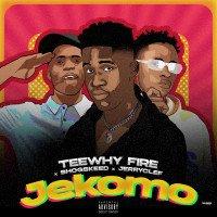 Teewhy Fire - Jekomo (feat. Shogskeed & Jeryclef)