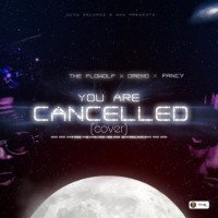 The Flowolf X Dremo X Fancy Riddle - YOU ARE CANCELLED (cover)