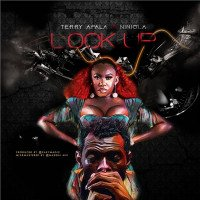 Terry Apala - Lock Up (feat. Niniola)