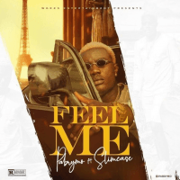 Pa Brymo - Feel Me (feat. Slimcase)