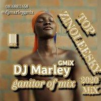 DJ Marley - Top Zinoleesky 2020