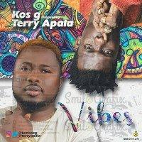 Kos G - Vibes (feat. Terry Apala)