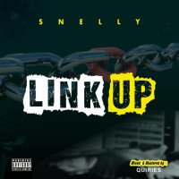 Snelly - Link Up