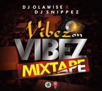 Dj Olawise Ft DJ snippez - Dj Olawise Ft Dj Snippez - Vibes On Vibes Mix