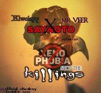 Elwalexy - Saynotokillings&xenophobia