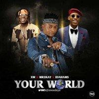 XW - Your World (feat. Mr 2kay, Idahams)