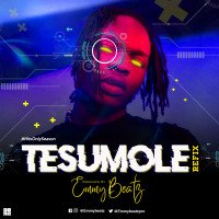 Emmybeatz - Naira Marley - Tesumole (Refix) Prod. Emmybeatz