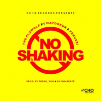 The Flowolf - No Shaking (feat. Mayorkun, Peruzzi)