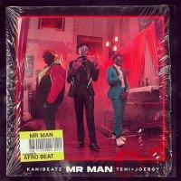 Kani Beatz - Mr Man (feat. Teni, Joeboy)