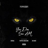 Yung6ix - You Don See Am (feat. Erigga, Dr. Barz, Payper Corleone)