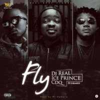 CDQ x Ice Prince x DJ Real - Fly