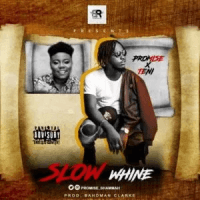 Promise - Slow Whine (feat. Teni)