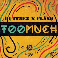 DJ Tunez x Flash - Too Much