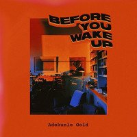Adekunle Gold - Before You Wake Up