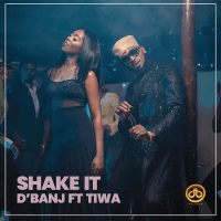D'Banj x Tiwa Savage - Shake It
