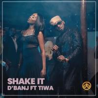 D'Banj x Tiwa Savage - Shake It