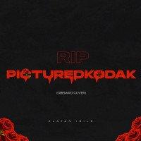 Zlatan - RIP PictureKodak (Gbemiro Cover)