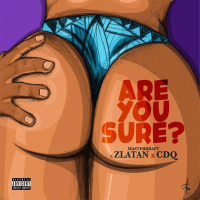 MasterKraft x Zlatan x CDQ - Are You Sure?