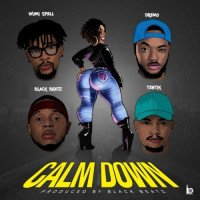 Black Beatz - Calm Down (feat. Dremo, Tentik, Wumi Spell)