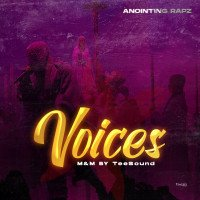 Anointing Rapz - Voices