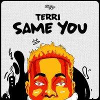 Terri - Same You