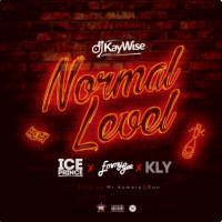 Dj Kaywise - Normal Level (feat. Ice Prince, Emmy Gee, KYL)