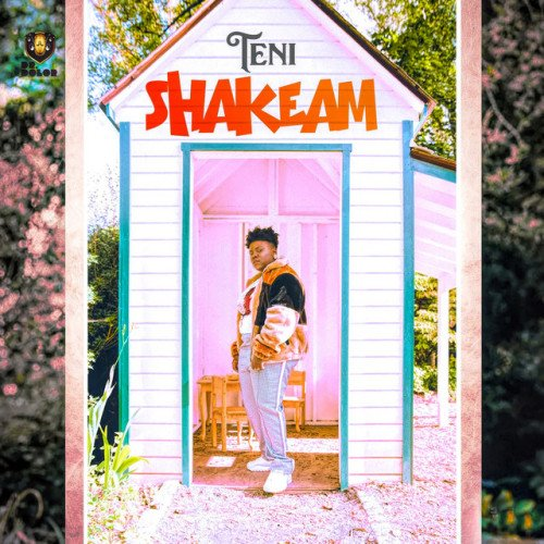 Teni - Shakeam