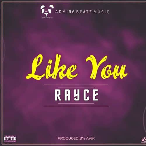 Rayce - Like You (feat. Avic)