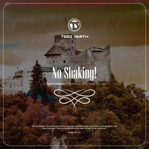 Tebz Smith - No Shaking!
