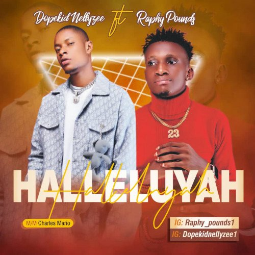 Nellyzee ft Raphy pounds - Halleluyah