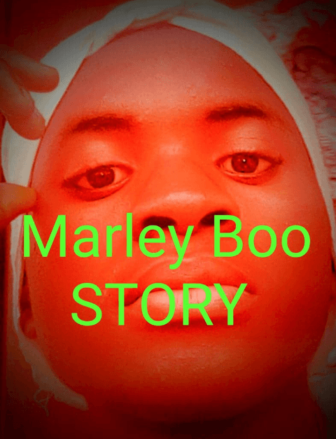 King Marley Boo - Story