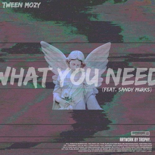 Tween Mozy ft Sandy Murks - What You Need