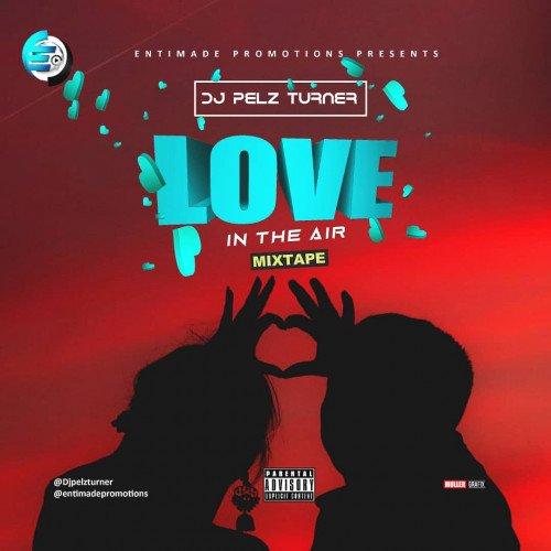DjPelz Turner - Love In The Air Mixtape